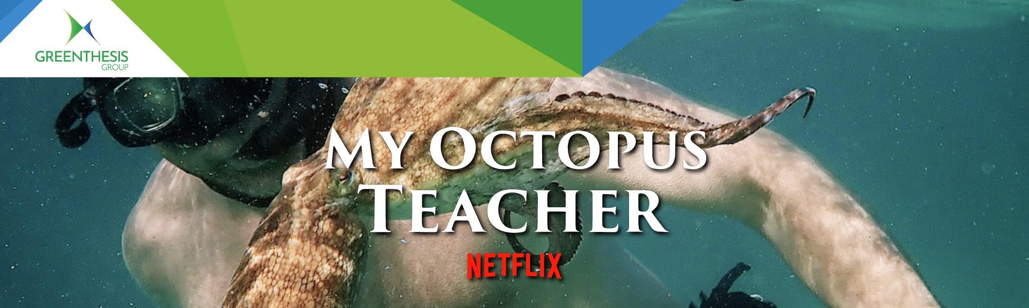 My Octopus Teacher: Oscar come miglior documentario e riflessione sull'ecosistema marino