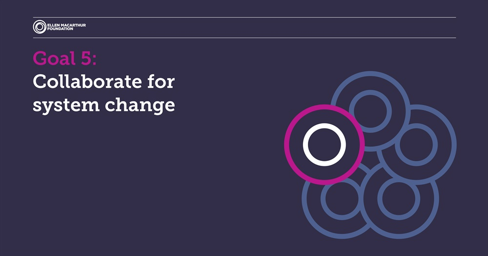 Obiettivo CINQUE: Collaborare per la modifica dell'intero sistema economico